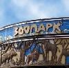 Зоопарки в Владивостоке