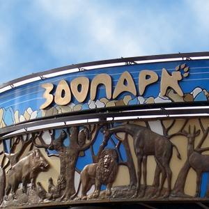 Зоопарки Владивостока